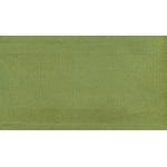 B0020 (BEST цв. зеленый)
