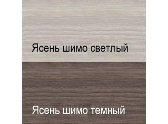 Шкаф-купе для одежды с зеркалом Ирис МН-312-11