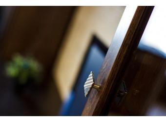 Шкаф с витриной «Тунис» П343.21Ш (венге с серебром)